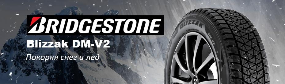 Обзор зимних шин Bridgestone Blizzak DM-V2