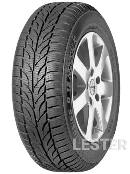 Paxaro Winter 195/60 R15 88T  (276575)